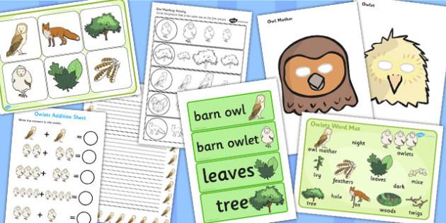 Childminder Owl Resource Pack - childminder, owl, resource, pack