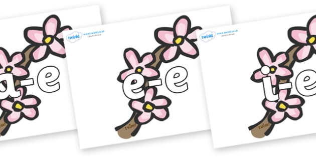 Modifying E Letters on Blossom - Modifying E, letters, modify, Phase 5, Phase five, alternative spellings for phonemes, DfES letters and Sounds