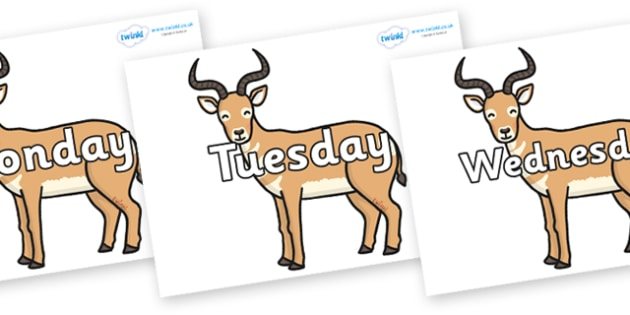 Days of the Week on Antelopes - Days of the Week, Weeks poster, week, display, poster, frieze, Days, Day, Monday, Tuesday, Wednesday, Thursday, Friday, Saturday, Sunday
