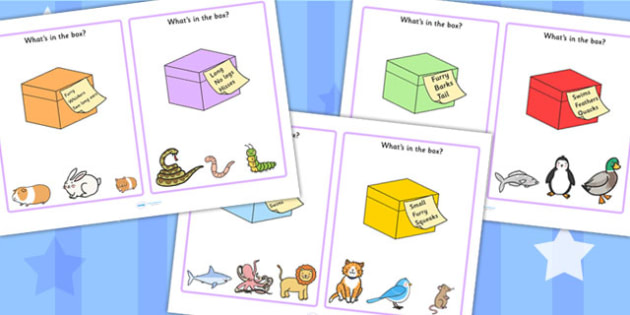Whats In the Box Drawing Inferences Activity Cards -  Inference