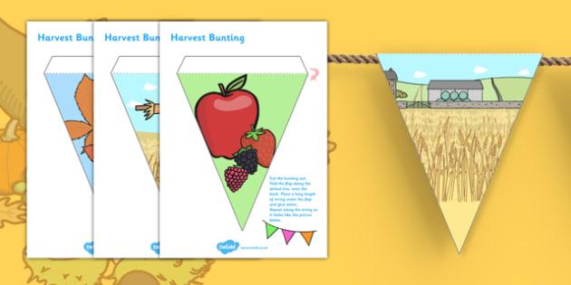 Harvest Display Bunting - autumn, seasons, weather, display