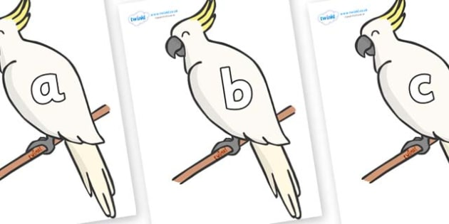 Phase 2 Phonemes on Cockatoos - Phonemes, phoneme, Phase 2, Phase two, Foundation, Literacy, Letters and Sounds, DfES, display