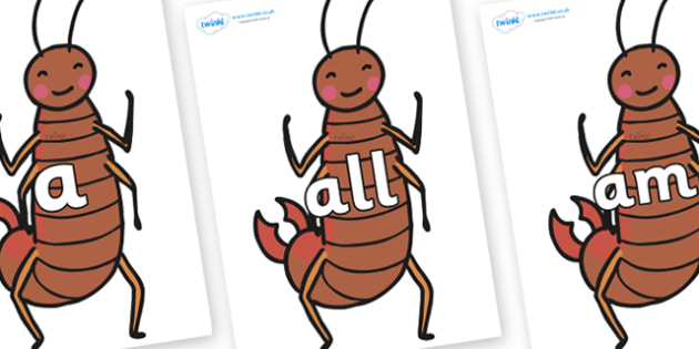Foundation Stage 2 Keywords on Earwigs - FS2, CLL, keywords, Communication language and literacy,  Display, Key words, high frequency words, foundation stage literacy, DfES Letters and Sounds, Letters and Sounds, spelling