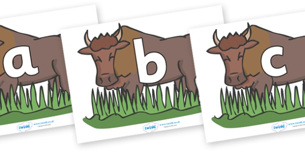 Phoneme Set on Bison - Phoneme set, phonemes, phoneme, Letters and Sounds, DfES, display, Phase 1, Phase 2, Phase 3, Phase 5, Foundation, Literacy