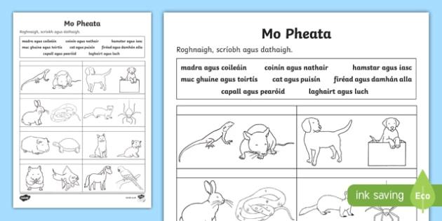 Mo Pheata, Roghnaigh agus Scríobh Activity Sheet-Irish, worksheet