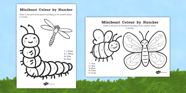 Minibeast Colour by Number - minibeast, colour, number, maths