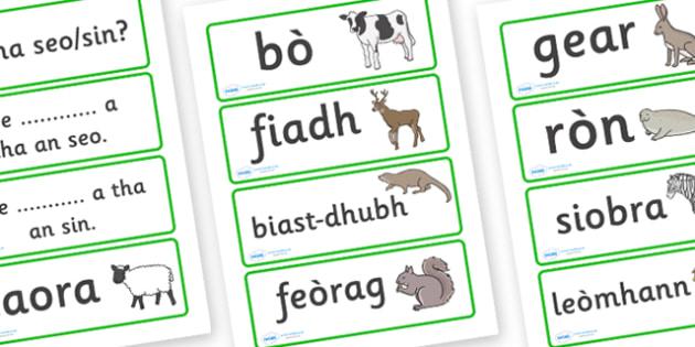 Animal Word Cards Scottish Gaelic - scottish gaelic, animal word cards, word cards, animals, language, languages, scotland, key words, flash cards, flashcards, gaels, celtic, literacy, aids, sheep, cow, deer, otter, squirrel, rabbit, seal, zebra, lio