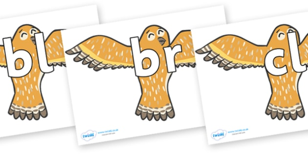 Initial Letter Blends on Owls - Initial Letters, initial letter, letter blend, letter blends, consonant, consonants, digraph, trigraph, literacy, alphabet, letters, foundation stage literacy
