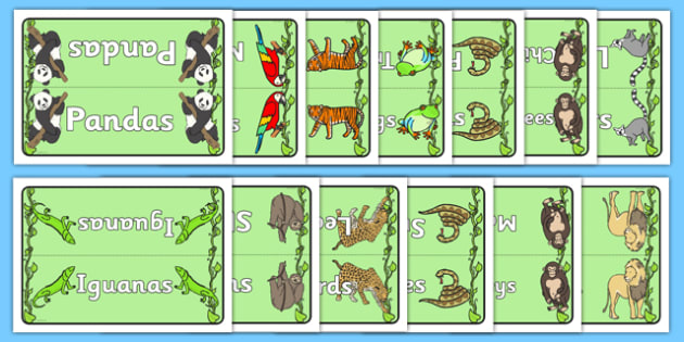 Editable Group Table Signs (Jungle & Rainforest) - Group signs, group labels, group table signs, table sign, teaching groups, class group, class groups, table label, vines, A4, display, snake, forest, ecosystem, rain, humid, parrot, monkey, gorilla
