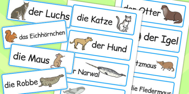 German Animals Word Cards - words, animal, literacy, visual aid