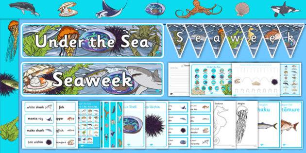 New Zealand Seaweek Resource Pack - nz, new zealand, seaweek, resource, pack