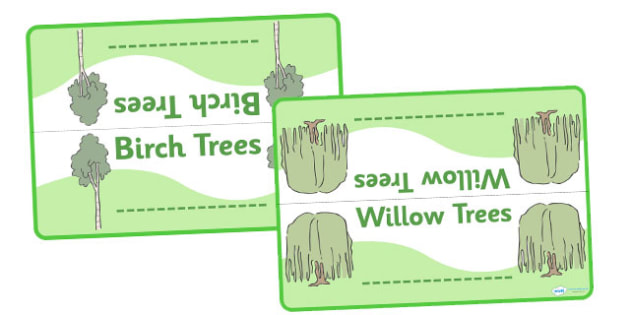 Editable Class Group Table Signs (Trees) - Tree, trees, group signs, group labels, group table signs, table sign, teaching groups, class group, class groups, table label, oak, birch, beech, cherry, willow, chestnut