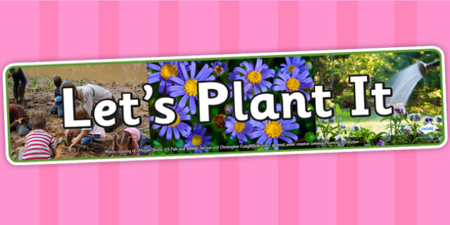 Lets Plant It IPC Photo Display Banner - science, IPC, banner