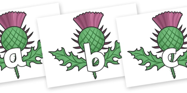 Phoneme Set on Thistles - Phoneme set, phonemes, phoneme, Letters and Sounds, DfES, display, Phase 1, Phase 2, Phase 3, Phase 5, Foundation, Literacy