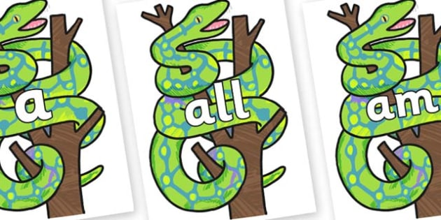 Foundation Stage 2 Keywords on Boa Constrictor to Support Teaching on The Bad Tempered Ladybird - FS2, CLL, keywords, Communication language and literacy,  Display, Key words, high frequency words, foundation stage literacy, DfES Letters and Sounds,