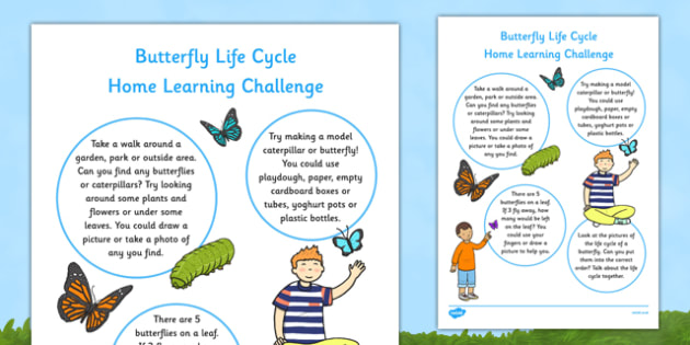 EYFS Butterfly Life Cycle Home Learning Challenge Sheet Nursery FS1 - EYFS, homework, Early years, insects, caterpillar, minibeasts.