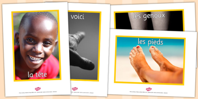 French My Body Display Photos - french, display, photos, body