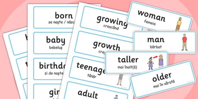 Growth Word Cards Romanian Translation - romanian, growth, word cards, word, cards