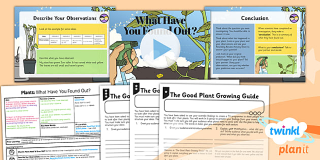 PlanIt - Science Year 3 - Plants Lesson 3: What Have You Found Out? Lesson Pack