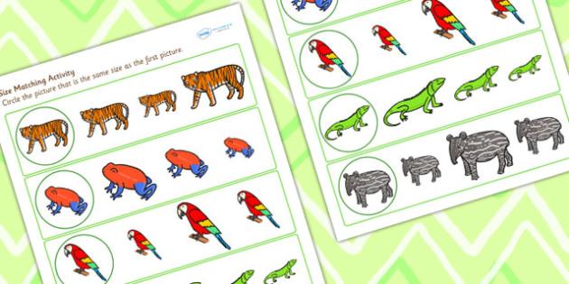 Jungle Theme Size Matching Worksheet - jungle, size, match, shape