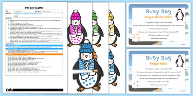 Penguin Matching EYFS Busy Bag Plan and Resource Pack - Antarctic, Polar, Penguin, busy bag, matching, match
