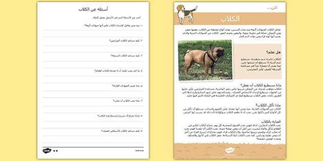 القراءة والاستيعاب عن الكلاب - الكلاب، القراءة، استماع، مواد - arabic, Reading comprehension, dog, find, locate, read, comprehend, fact, title, fact file, information, question