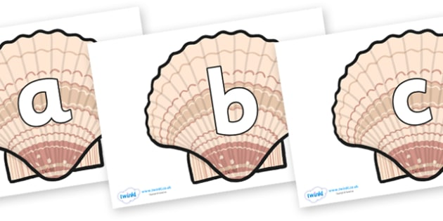 Phoneme Set on Seashells - Phoneme set, phonemes, phoneme, Letters and Sounds, DfES, display, Phase 1, Phase 2, Phase 3, Phase 5, Foundation, Literacy