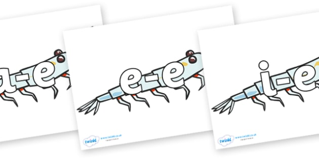 Modifying E Letters on Plankton - Modifying E, letters, modify, Phase 5, Phase five, alternative spellings for phonemes, DfES letters and Sounds