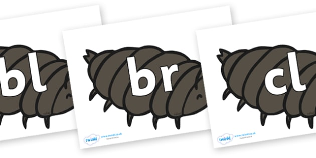 Initial Letter Blends on Woodlice - Initial Letters, initial letter, letter blend, letter blends, consonant, consonants, digraph, trigraph, literacy, alphabet, letters, foundation stage literacy