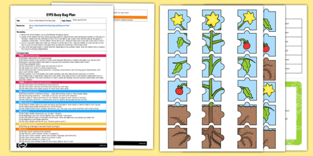 Grow a Plant Beetle Drive EYFS Busy Bag Plan and Resource Pack - growing, growth, beanstalk, dice, number, counting, number recognition