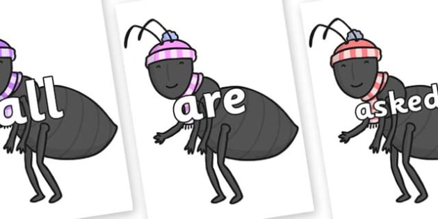 Tricky Words on Ant - Tricky words, DfES Letters and Sounds, Letters and sounds, display, words