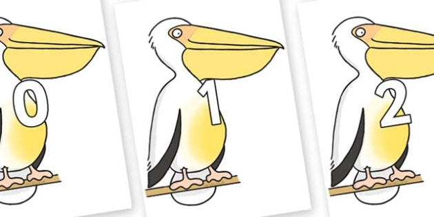 Numbers 0-100 on Pelican to Support Teaching on The Great Pet Sale - 0-100, foundation stage numeracy, Number recognition, Number flashcards, counting, number frieze, Display numbers, number posters
