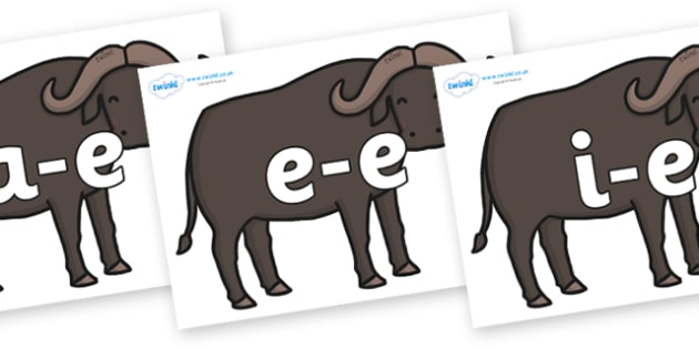 Modifying E Letters on Buffalos - Modifying E, letters, modify, Phase 5, Phase five, alternative spellings for phonemes, DfES letters and Sounds
