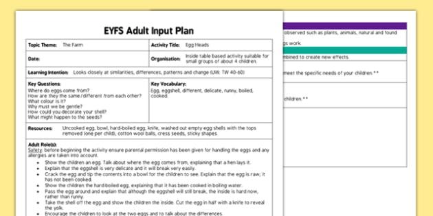 Egg Heads EYFS Adult Input Plan - plan, lesson plans, adult led