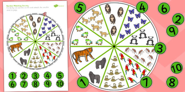 Peg Number Matching Activity Jungle and Rainforest-Themed - jungle