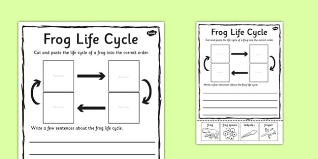 Frog Life Cycle Sentence Writing Activity Sheet - write, activity, worksheet