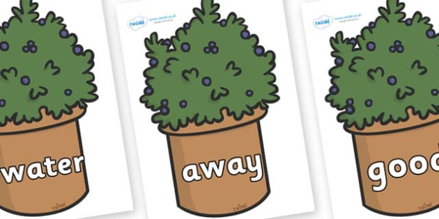 Next 200 Common Words on Plants - Next 200 Common Words on  - DfES Letters and Sounds, Letters and Sounds, Letters and sounds words, Common words, 200 common words