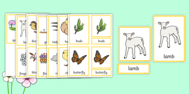 Spring Three Part Cards