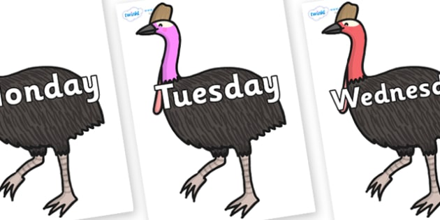 Days of the Week on Cassowary - Days of the Week, Weeks poster, week, display, poster, frieze, Days, Day, Monday, Tuesday, Wednesday, Thursday, Friday, Saturday, Sunday