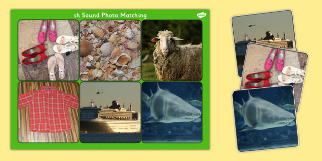 Initial 'sh' Sound Photo Matching Board and Cards - matching