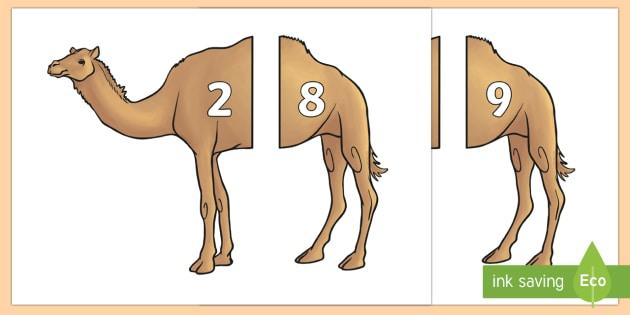 Camel Number Bonds to 10 Matching Cards - UAE Maths Resources, number bonds, matching numbers to 10, maths, basic maths understanding