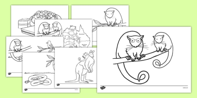 Bush Magic Colouring Sheets - australia, bush magic, possum magic, colouring sheets