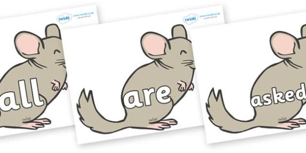 Tricky Words on Chinchillas - Tricky words, DfES Letters and Sounds, Letters and sounds, display, words