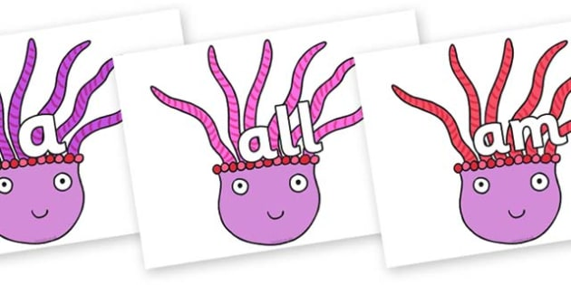 Foundation Stage 2 Keywords on Anemone to Support Teaching on Sharing a Shell - FS2, CLL, keywords, Communication language and literacy,  Display, Key words, high frequency words, foundation stage literacy, DfES Letters and Sounds, Letters and Sounds