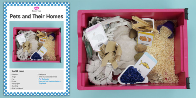 Pets and Their Homes Sensory Tray Card - sensory tray, pets