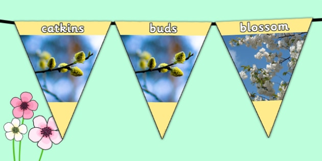 Spring Photo Display Bunting - spring, spring bunting, spring themed display bunting, spring display bunting, spring photos, spring photo bunting