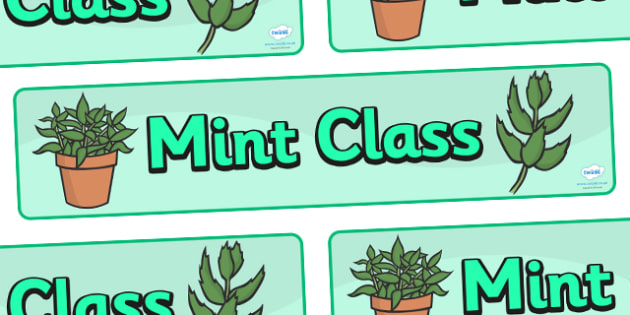 Mint Class Display Banner - mint class, class banner, class display, mint, classroom banner, classroom areas signs, areas, display banner, display