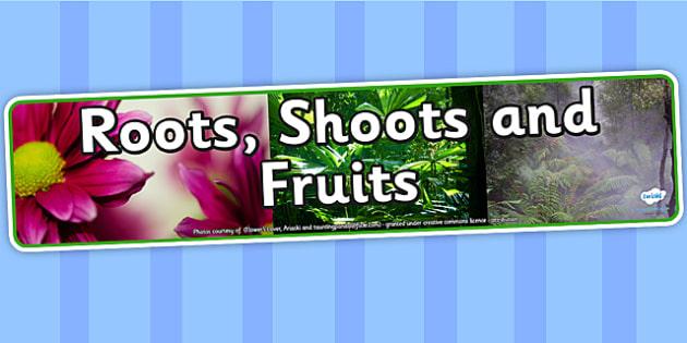 Roots Shoots and Fruits IPC Photo Display Banner - fruit and vegetables, IPC display banner, IPC, fruit and vegetables display banner, IPC display