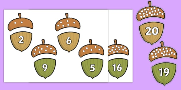 Acorn Counting Game up to 20 - numbers, count, numeracy, twenty, fun, activity, eyfs, ks1,