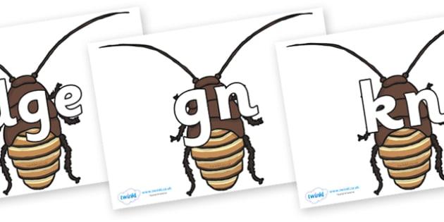 Silent Letters on Cockroach - Silent Letters, silent letter, letter blend, consonant, consonants, digraph, trigraph, A-Z letters, literacy, alphabet, letters, alternative sounds